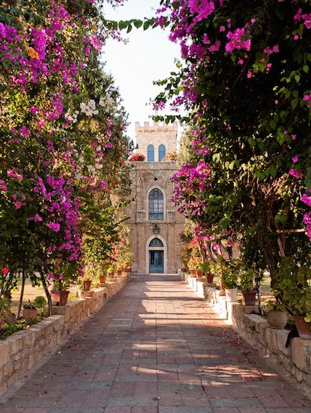 Im Garten von Kloster Cremisan, Foto by Stefano Vinci