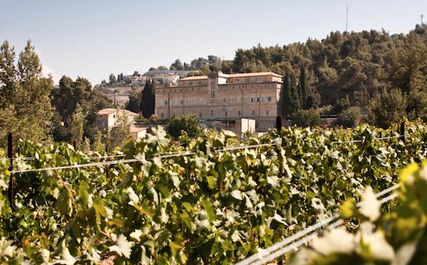 Weingut und Kloster Cremisan, Foto by Stefano Pinci