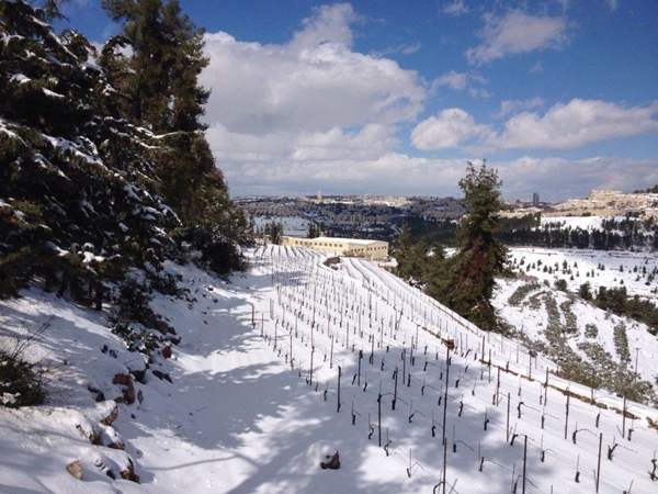 Cremisan-snow-1