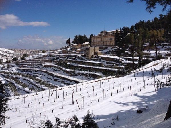 Cremisan-snow-2
