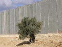 Die_Mauer 1 de