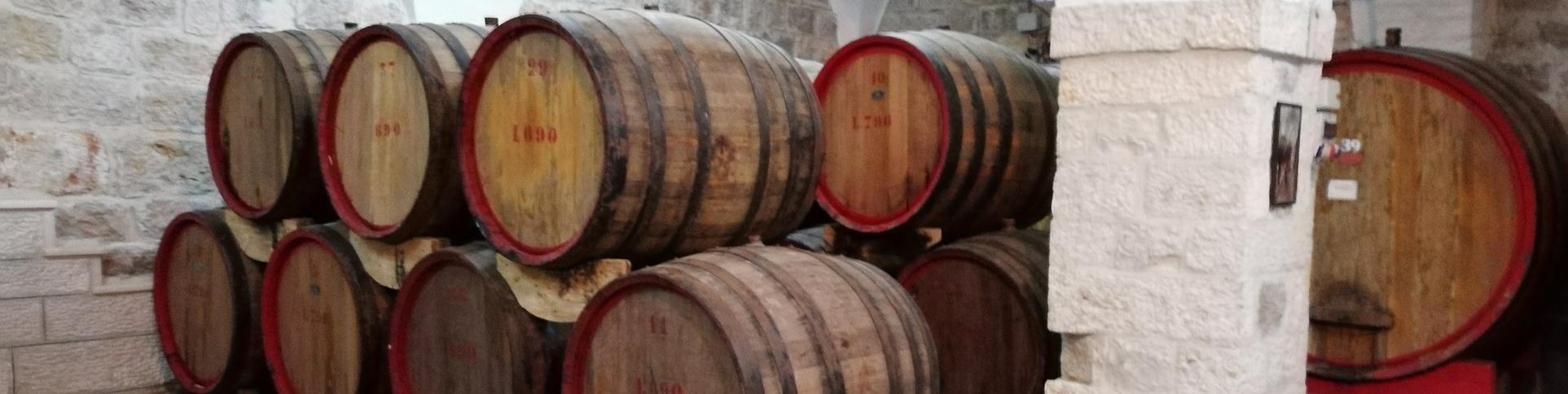 Weinanbau bei Bethlehem